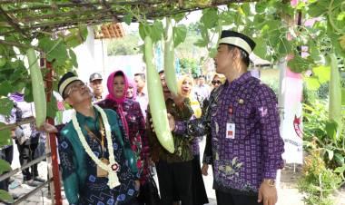 Munculkan Inovasi, Desa Pangkat Wakili Banten ke Ajang Lomba Kampung Tingkat Nasional