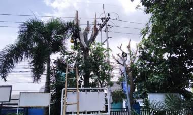Petugas PLN Tewas Kesetrum Saat Benahi Kabel di Periuk Tangerang