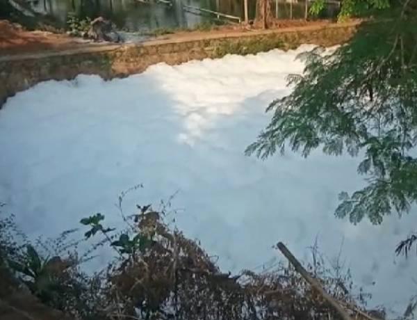 Kali Ciledug Berbusa Mirip Salju, Warga Khawatir Limbah Berbahaya