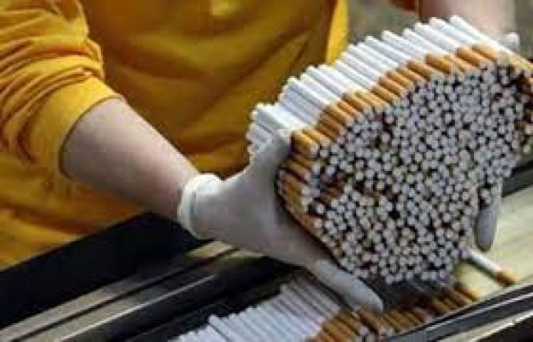 Ratusan Ribu Rokok Ilegal Tanpa Cukai Disita DJBC Banten